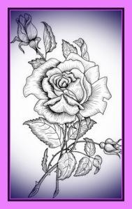rosas para dibujar 7